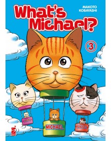 What's michael? Miao edition 3