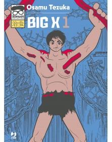 Big X 1