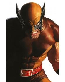 Wolverine 9 - Classic...